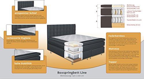 komplettset boxspringbett line box taschenfederkern matratze 5 zonen taschenfederkern top. Black Bedroom Furniture Sets. Home Design Ideas