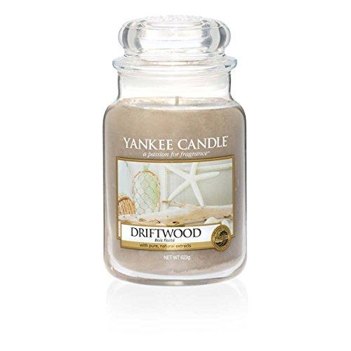 Yankee Candle (YANK6) 1533667E Coastal Living Duftkerze, Glas, Hellbraun, 17.5 x 9.8 x 9.8 cm