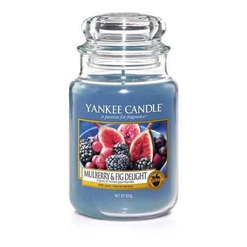 Yankee Candle - Mulberry und Feige Freude, Kerze (großes Glas), Blau, 10, 7 x cm, 1 Einheiten