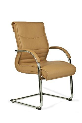 FineBuy XXL Freischwinger Stuhl mit Armlehnen Leder Optik